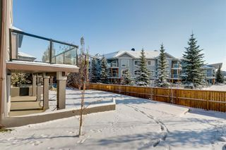 Photo 45: 108 Stonemere Point: Chestermere Detached for sale : MLS®# A1045824