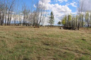 Photo 8: 57032 RR 50: Rural Lac Ste. Anne County Rural Land/Vacant Lot for sale : MLS®# E4244016