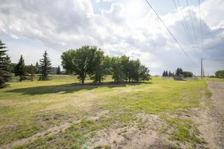 Photo 40: 2719 41A Avenue SE in Calgary: Dover Detached for sale : MLS®# A1132973