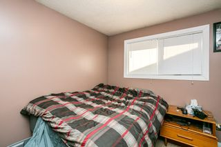 Photo 16: 10565 26 Avenue in Edmonton: Zone 16 House for sale : MLS®# E4237049