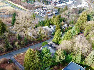 Photo 6: 10592 125B Street in Surrey: Cedar Hills House for sale (North Surrey)  : MLS®# R2540519