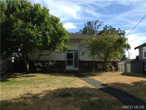 Main Photo: 1285 Holloway St in VICTORIA: SE Cedar Hill House for sale (Saanich East)  : MLS®# 677947