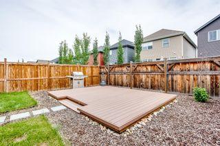 Photo 40: 200 AUBURN GLEN Close SE in Calgary: Auburn Bay Detached for sale : MLS®# A1010535