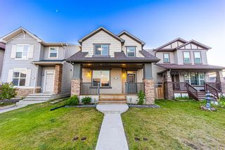 Main Photo: 305 Skyview Ranch Way NE in Calgary: Skyview Ranch Detached for sale : MLS®# A1138473