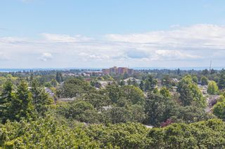 Photo 62: 1319 Tolmie Ave in : Vi Mayfair House for sale (Victoria)  : MLS®# 878655