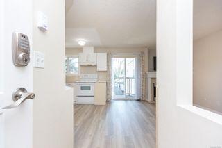 Photo 7: 305 445 Cook St in : Vi Fairfield West Condo for sale (Victoria)  : MLS®# 872597