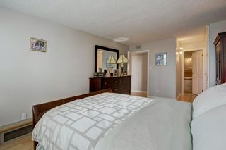Photo 17: 503 330 26 Avenue SW in Calgary: Mission Apartment for sale : MLS®# A1105645