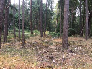 Photo 12: lot 7 Salal Dr in : Isl Mudge Island Land for sale (Islands)  : MLS®# 863615