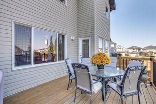 Photo 44: 14 SILVERADO SKIES Crescent SW in Calgary: Silverado House for sale : MLS®# C4140559