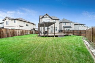 Photo 16: 319 Walden Mews SE in Calgary: Walden Detached for sale : MLS®# A1139495