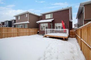 Photo 30: 156 Redstone Heights NE in Calgary: Redstone Detached for sale : MLS®# A1066534