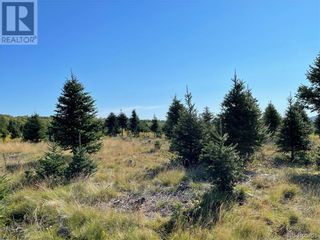 Photo 28: - Saint David Ridge in St. Stephen: Vacant Land for sale : MLS®# NB063465