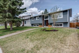 Photo 49: 6516 Law Drive SW in Calgary: Lakeview Detached for sale : MLS®# A1107582