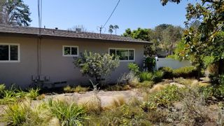 Photo 29: POINT LOMA House for sale : 3 bedrooms : 3702 Del Mar Ave in San Diego