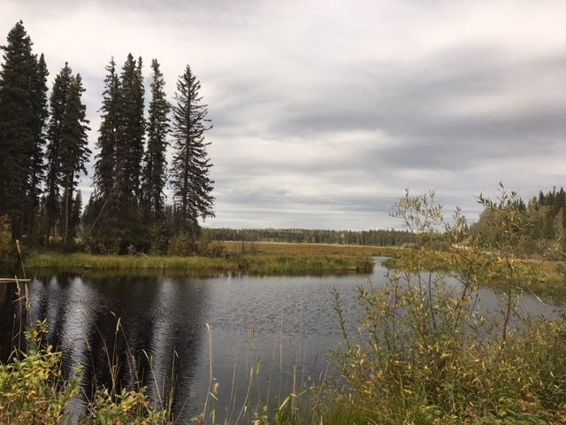 """Photo 1: Photos: 4371 BLACKWATER Road in Quesnel: Bouchie Lake House for sale in """"BLACKWATER - NAZKO"""" (Quesnel (Zone 28))  : MLS®# R2402787"""