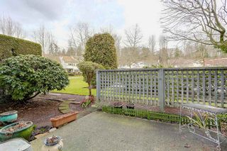 "Photo 17: 109 11578 225 Street in Maple Ridge: East Central Condo for sale in ""THE WILLOWS"" : MLS®# R2138956"