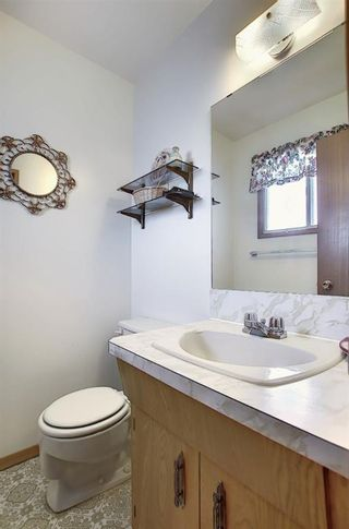 Photo 12: 4323 49 Street NE in Calgary: Whitehorn Detached for sale : MLS®# A1043612