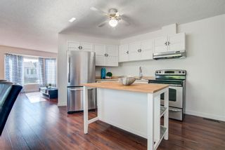 Photo 11: 4128 37 Street in Edmonton: Zone 29 House for sale : MLS®# E4253899
