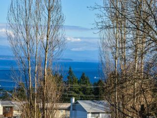 Photo 52: 789 Nancy Greene Dr in CAMPBELL RIVER: CR Campbell River Central House for sale (Campbell River)  : MLS®# 778989