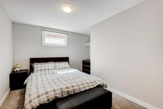Photo 19: 359 Ashley Crescent SE in Calgary: Acadia Detached for sale : MLS®# A1115281