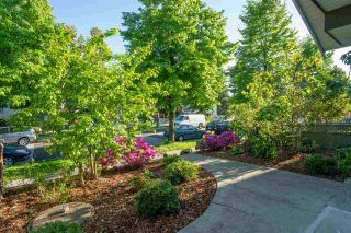 Photo 22: 3469 WILLIAM STREET in Vancouver: Renfrew VE House for sale (Vancouver East)  : MLS®# R2582317
