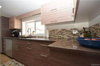 Photo 8: 297 Knowles Avenue in Winnipeg: North Kildonan Residential for sale (3G)  : MLS®# 1809527