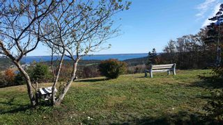 Photo 6: Lot 1 Tommy Branch in Little River: 401-Digby County Vacant Land for sale (Annapolis Valley)  : MLS®# 202101348