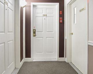 Photo 4: 309 8068 120A Street in Surrey: Queen Mary Park Surrey Condo for sale : MLS®# R2561621