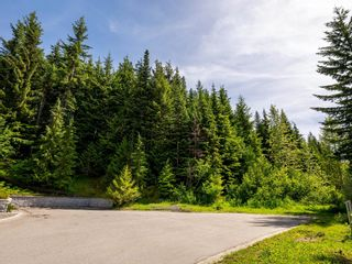 Photo 8: 4901 HORSTMAN Place in Whistler: Benchlands Land for sale : MLS®# R2612602