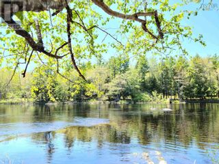 Photo 9: Medway River Road in Bangs Falls: Vacant Land for sale : MLS®# 202122898