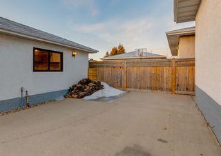 Photo 44: 11039 166 Avenue: Edmonton Detached for sale : MLS®# A1083224