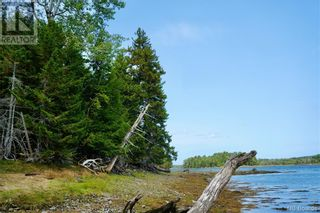 Photo 6: 2 Hills Point Estates in Oak Bay: Vacant Land for sale : MLS®# NB049865