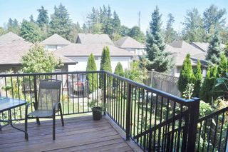 """Photo 29: 6854 208 Street in Langley: Willoughby Heights Condo for sale in """"Milner Heights"""" : MLS®# R2603848"""