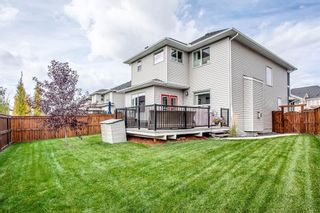 Photo 47: 187 Cranford Green SE in Calgary: Cranston Detached for sale : MLS®# A1092589