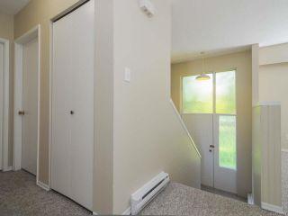 Photo 30: 8662 Whelan Rd in MERVILLE: CV Merville Black Creek House for sale (Comox Valley)  : MLS®# 730163