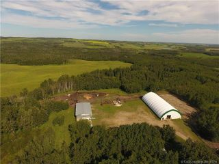 Photo 45: 41405 Range Road 231: Rural Lacombe County Detached for sale : MLS®# CA0173239
