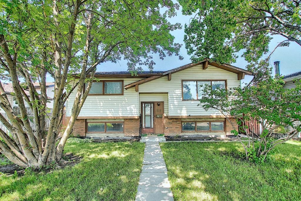 Main Photo: 212 Rundlefield Road NE in Calgary: Rundle Detached for sale : MLS®# A1129296