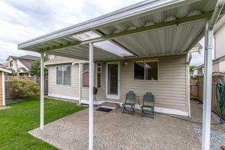 Photo 19: 20670 W RIVER Road in Maple Ridge: Southwest Maple Ridge House for sale : MLS®# R2410039
