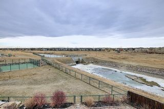 Photo 47: 167 COVE Close: Chestermere Detached for sale : MLS®# A1090324