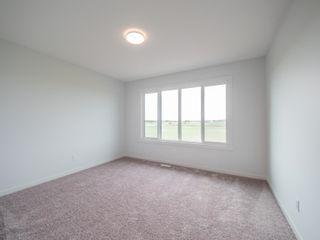Photo 33: 20031 26 Avenue in Edmonton: Zone 57 House for sale : MLS®# E4247510