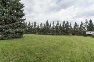 Photo 41: 18951 121 Avenue in Edmonton: Zone 40 House for sale : MLS®# E4239592