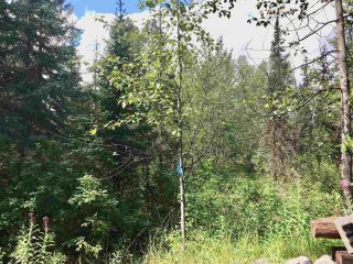 Photo 9: LOT 10 ISLAND PARK Drive in Prince George: Miworth Land for sale (PG Rural West (Zone 77))  : MLS®# R2388123