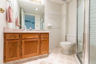 Photo 23: 9735 91 Street NW in Edmonton: Zone 18 Carriage for sale : MLS®# E4240247
