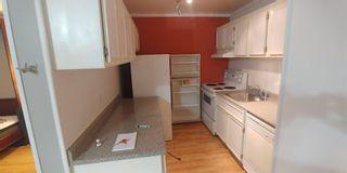Photo 10:  in Edmonton: Zone 15 Condo for sale : MLS®# E4247688