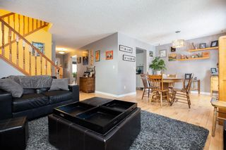 Photo 17: 309 Thibault Street in Winnipeg: St Boniface Residential for sale (2A)  : MLS®# 202008254