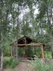 Photo 4: 461028 RR 74: Rural Wetaskiwin County House for sale : MLS®# E4252935