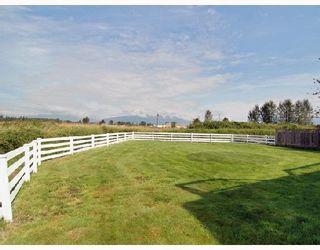 "Photo 10: 20037 OSPRING Street in Maple_Ridge: Southwest Maple Ridge House for sale in ""HAMMOND SOUTH OF RICHMOND"" (Maple Ridge)  : MLS®# V665364"