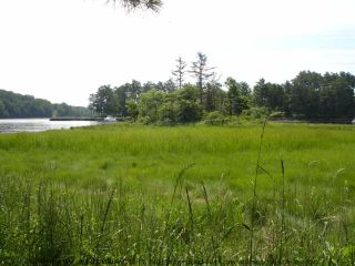 Photo 17: Lot 11 RAFUSE POINT Road in Pleasantville: 405-Lunenburg County Vacant Land for sale (South Shore)  : MLS®# 202100151