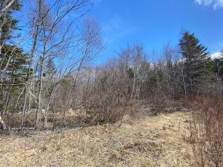 Photo 4: Lot 3 Porters Lake Station Road in Porters Lake: 31-Lawrencetown, Lake Echo, Porters Lake Vacant Land for sale (Halifax-Dartmouth)  : MLS®# 202107260