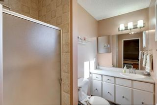 Photo 18: 11 Bedwood Place NE in Calgary: Beddington Heights Detached for sale : MLS®# A1118469